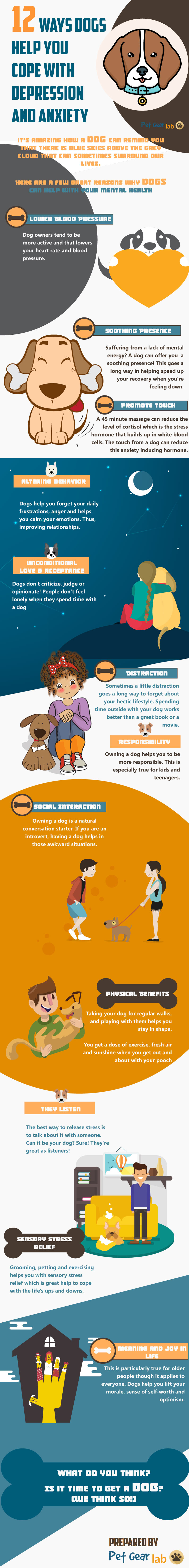 12 reasons dogs help with depression